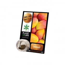 Résine CBD MANGO FRUIT 3,8% 1G