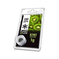 Gelee CBD KIWI 22% 1G