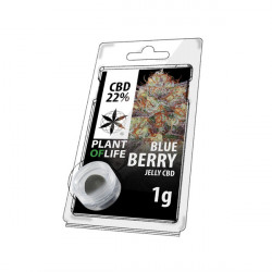 Jelly CBD BLUEBERRY 22% 1G