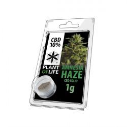 Résine CBD AMNESIA HAZE 10% 1G Plant of Life