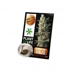 Résine CBD LEMON HAZE 3,8% 1G Plant of Life