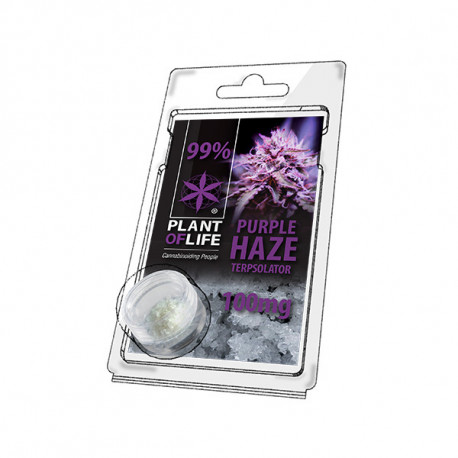 Terpsolator 99% CBD - Purple Haze - 100mg