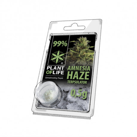 Terpsolator 99% CBD - Amnesia Haze - 500mg