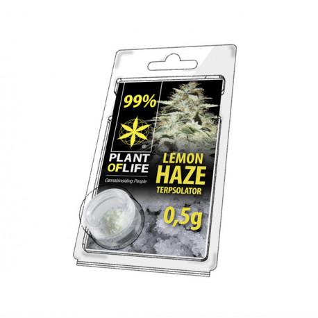 Terpsolator 99% CBD - Lemon Haze - 500mg