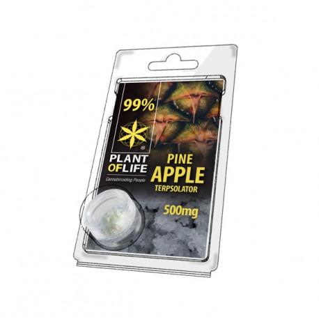 Terpsolator 99% CBD - Pineapple - 500mg