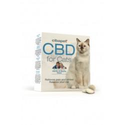 Granulki CBD dla kotów